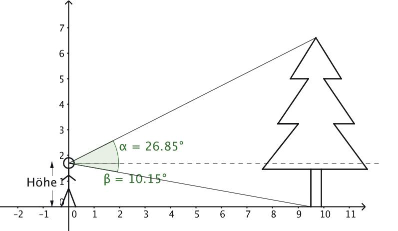 Abb. 2: Die beiden Blickgeraden bilden zusammen mit der gestrichelten Linie und der Symmetrieachse des Baumes zwei rechtwinklige Dreiecke. Spezielle Messgeräte zur Winkelmessung sind unter der Bezeichnung Theodolit bekannt.
