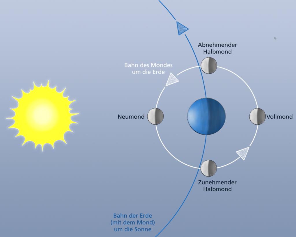 """Mit der Sonne """"im Rücken"""" sehen wir die von ihr erleuchtete Seite des Mondes (Vollmond). Stehen Sonne, Erde und Mond im rechten Winkel, ist Halbmond. Wenn der Mond zwischen der Sonne und uns steht, sehen wir ihn gar nicht. © Schülerforschungszentrum Südwürttemberg (SFZ)"""