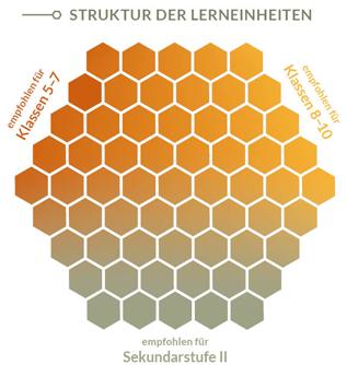 Bienen Struktur Lerneinheiten