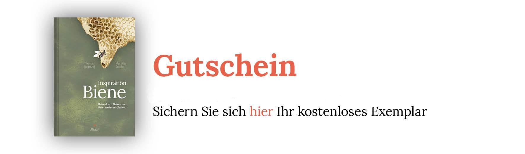 Gutschein-Sachbuch-InspirationBiene