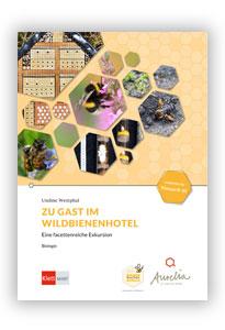 Zu Gast im Wildbienenhotel